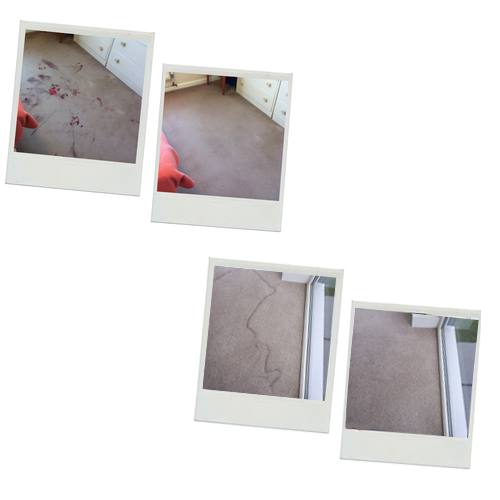 commercial carpet cleaning in thanet