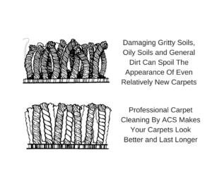 How Long Should Your Carpet Last