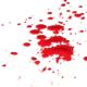 Blood stain carpet
